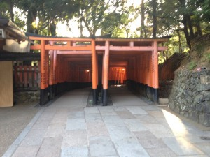 Kyoto 9